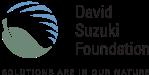 DSF-logo-RGB